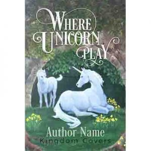illustrated unicorn book cover premade